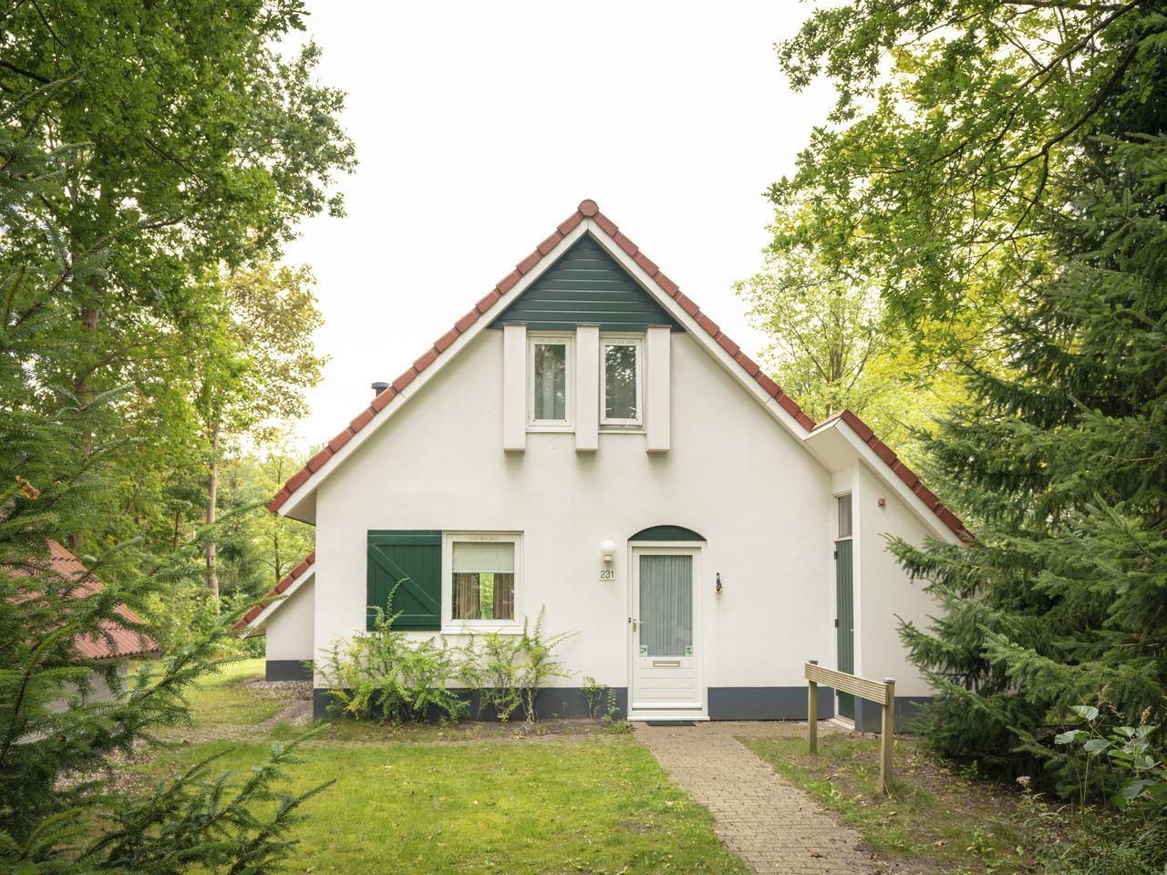 Komfort 4-Personen-Ferienhaus im Ferienpark Landal  in den Niederlande