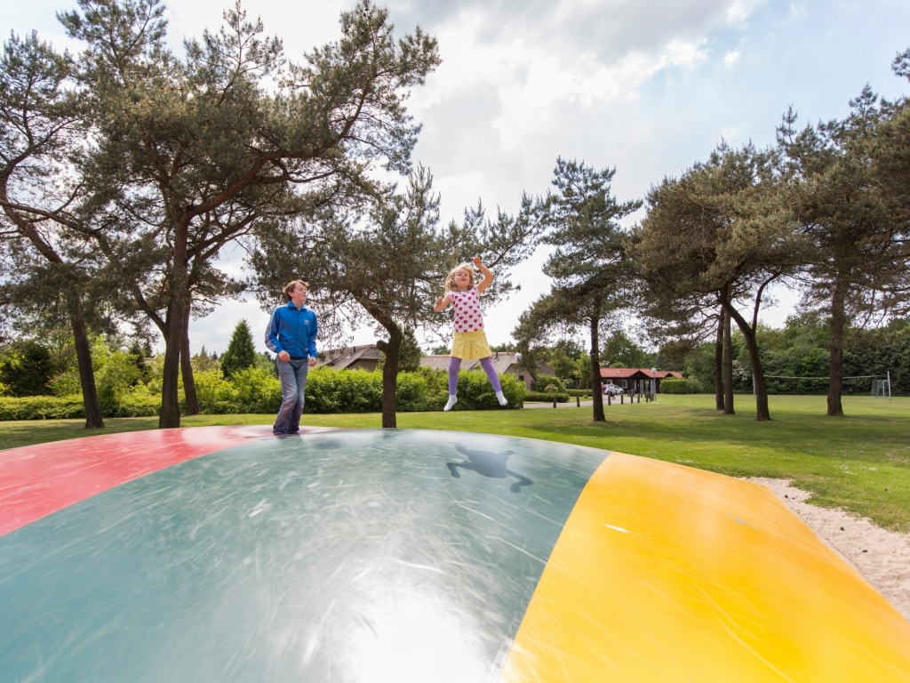 Ferienwohnung Komfort 4-Personen-Ferienhaus im Ferienpark Landal De Veluwse Hoevegaerde - im Wald/waldre (2669884), Putten, Veluwe, Gelderland, Niederlande, Bild 14